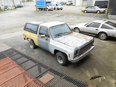 Chevrolet Blazer 2Wd Project