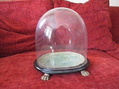 Early/Mid 19th century paw foot glass display dome