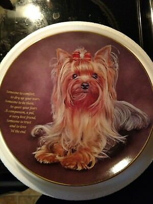 Danbury Mint Yorkshire Terrier Someone to Comfort Limited Edition Plate.