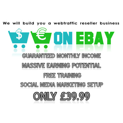 We Will Build You An Highly Profitable web traffic reseller Ebay Business