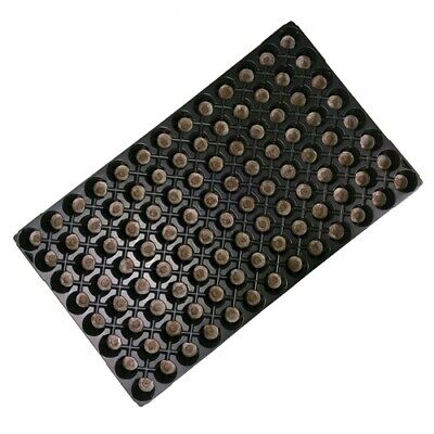 Seed Tray with Compressed Pellet Peat Jiffy 7 - 104 Holes (53x31cm)