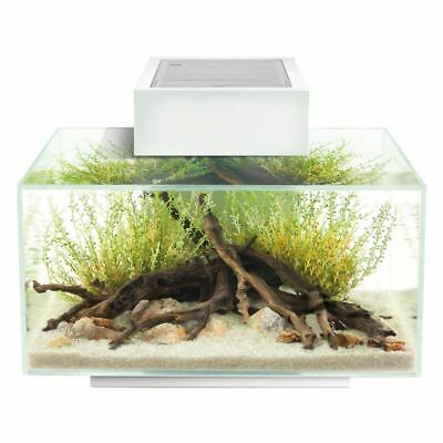 Fluval Edge 2.0 Aquarium A 23-Litre Aquarium With Removable Cover LED Lights