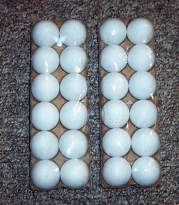 24 White Plastic Fake Faux Decorative Eggs Dyeable Markable 4 Crafts Party Favor