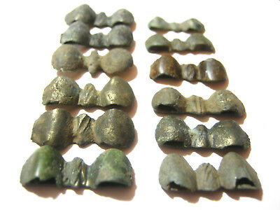 "Lot of 12 Ancient Celtic Bronze ""Astragal"" Belt Stiffeners 5th-1st century BC"