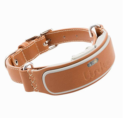 Link AKC Smart Dog Collar with GPS Tracker amp Activity Monitor