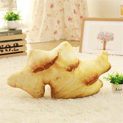 (Ginger) - Mynse 60cm 35cm 3D Creative Simulation Fruit and Vegetable Cushions