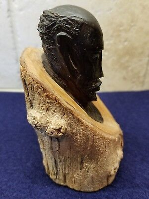 Ancient African Tribal Petrified Wood  Head Carving