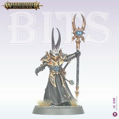 Bits Slaves To Darkness Chaos Sorcerer Lord Warhammer Age Of Sigmar