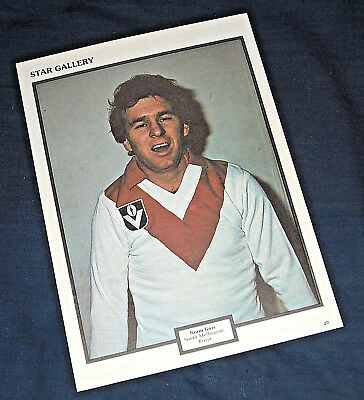 1977 Star Gallery **SOUTH MELB SWANS** VFL PIN-UP ft. Norm Goss +Bonus *Vintage*