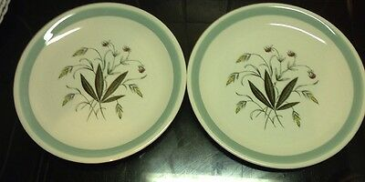 2 x  Alfred Meakin Crown Goldendale Salad Plates Hedgerow Pattern 1950s Ceramics