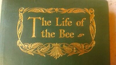 The Life Of The Bee By MAURICE MAETERLINCK 1908 Antique Hardback Book