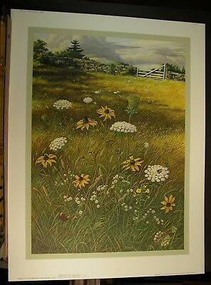 Frederic James New England Meadow AP 65/100 Queen Anne's Lace Black Eyed Susan