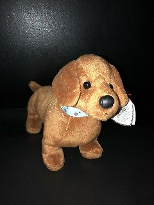 Ty 2.0 Beanie Babies, FRANK the Dachshund Dog ,NEW with TAGS!!