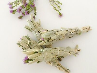 🌿 White SAGE & Wild Thyme 🌿Smudge Stick 7'inches, Wild And Organic