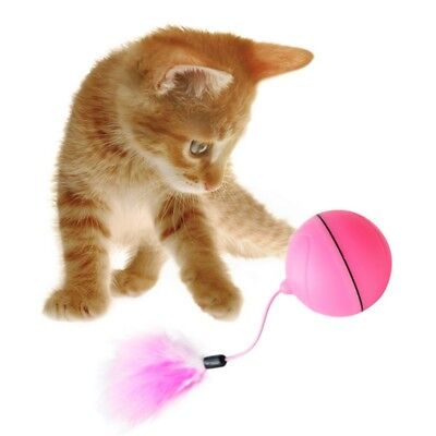 Automatic Interactive Rolling Whirl Electronic Light Motion Toys Cat Play Toy AU