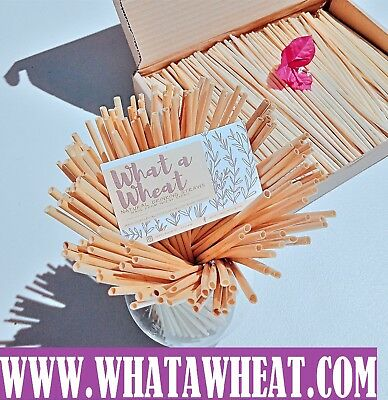 500Natural Single Use DRINKING WHEAT STRAWS alternative to paper steel straw