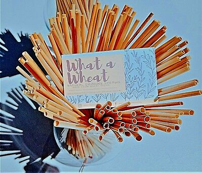 1000 WHATAWHEAT natural drinking straws *eco-friendly alternative to plastic *