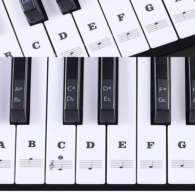 Quicklessons Piano Course: Learn to Play Piano by Ear