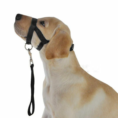 Dogalter Dog Halter Halti Training Head Collar Gentle Leader Harness Black