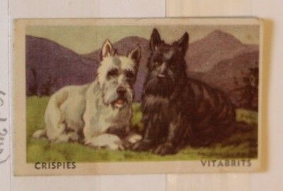 (L 22-23) - Weeties Crispies Vitabrits Cards -Favourite Dogs-1940's Card 1,12