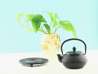300mL Cast Iron Teapot & Trivet Set w/ S/S Infuser Hobnail Black Kettle Tea Pot