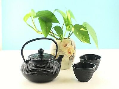 New Cast Iron Teapot 600mL & 2 Cup Set Hobnail Black Kettle Tea Pot RRP $69