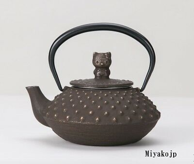 Hello Kitty Teapot Tea Iron Japanese Kyusu Tetsubin Nanbu Tekki Iwachu Japan New