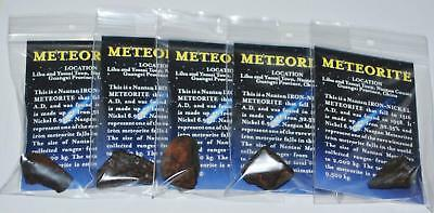 Nantan Iron Genuine Meteorites - Lot of 5 - 11 to 20 gram size (L) #10670 6o