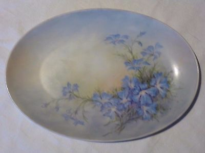 DISPLAY PLATE HAND PAINTED BY J McCULLOCH LESCHENAULTIA GOSNELLS WA