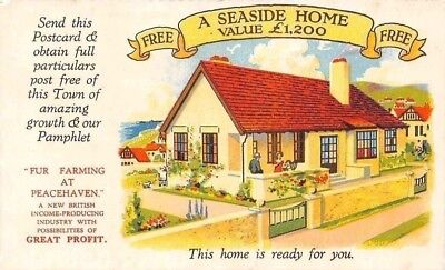 "Free ""Seaside Home"" home is ready for you, Advertising Old Postcard"