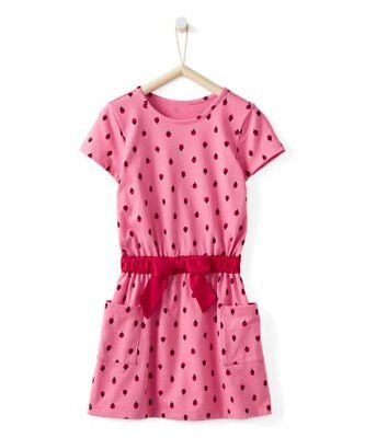 4bc4798f5ea NWT Hanna Andersson Girl s Take A Bow in Cottage Pink Ladybug Dress 150 12  14