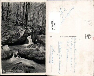 452298,Luxembourg Le Hallerbach Waldbach Wald