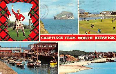 Scotland Greetings from North Berwick Highland Dancer, Bass Rock, Harbour Bay