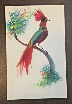 Vintage 1940s Folk Art * Hand Painted * Colorful Bird w Real Feathers * Mexico