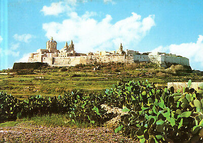 Malta  -  Mdina - City view with the Mrtropolitan Cathedral of Saint Paul