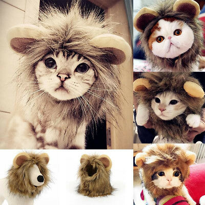 Kitten Cat Dog Puppy Pet Costume Cosplay Lion Mane Wig Cap Hat Clothes Nature