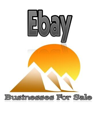 B2B Business For Sale