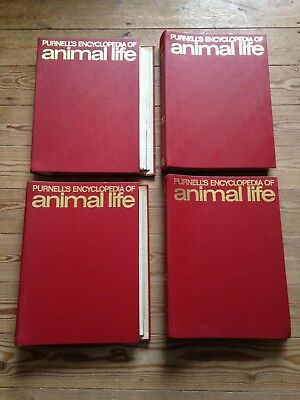 64 X Bound Issues Of Purnell's Encyclopedia Of Animal Life Volumes 1, 3, 4, 5