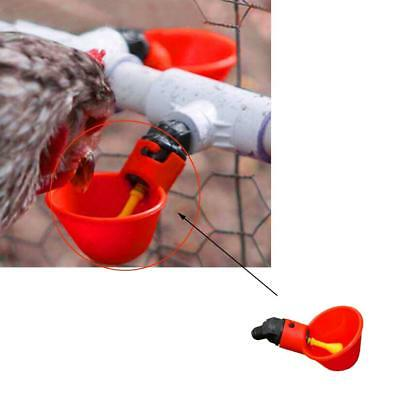 4 Pack Poultry Water Drinking Cups-Chicken Hen Plastic Automatic Drinker Red New