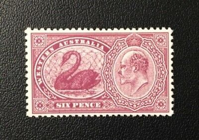 WESTERN AUSTRALIA FORGERY 6d CLARET PROOF ESSAY KING & SWAN 1905 MNG
