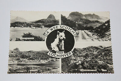 Postcard A Wee Scotch Frae Lochinver Multiview Inverness-shire RP Postcard