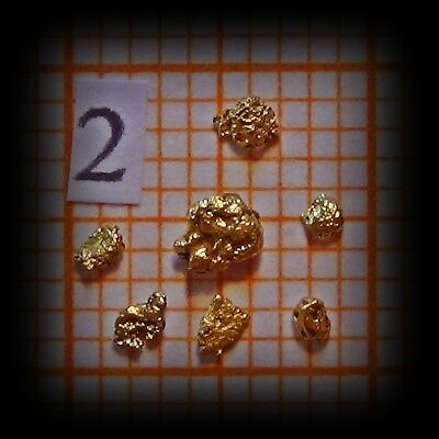 7 Gold Nuggets aus Alaska (2)
