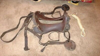 US 1904 McClellan saddle complete with all saddle straps