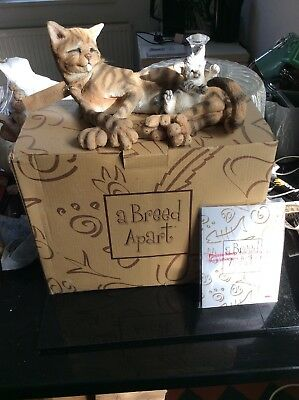 Country Artists A Breed Apart Silver N Gold Cat Boxed Large