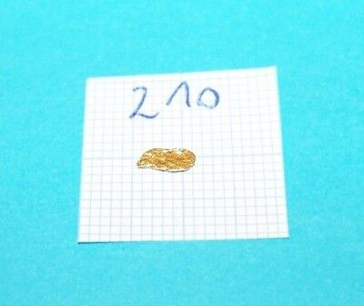 0,085g  Alaska Yukon GOLD NUGGET Gold Nuggets! #210 Barren Goldnugget