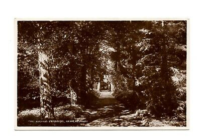 The Avenue Paradise Near Kemnay Aberdeenshire RP Postcard 1949