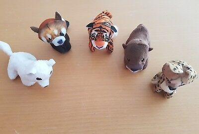 Mc Donalds Happy Meal National Geographic Kids 5 Tiere