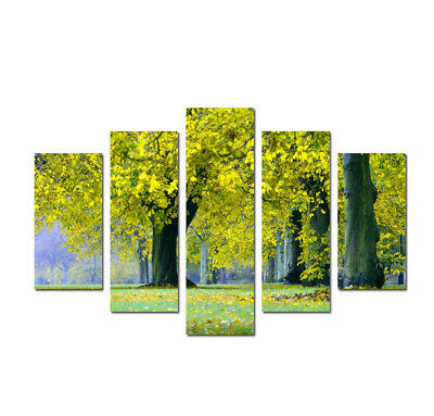 Large Framed on Canvas Green park Landscape Print Painting Wall Art Home Decor