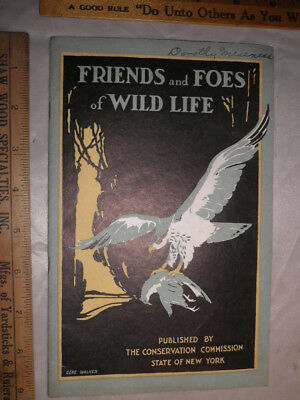 """Antique 1922 """"Friends and Foes of Wildlife"""" State of NY Conservation Commission"""