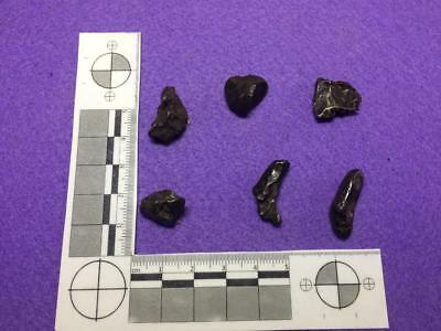 Sikhote-Alin meteorites . Six smaller , well sculpted specimens 29 gr total